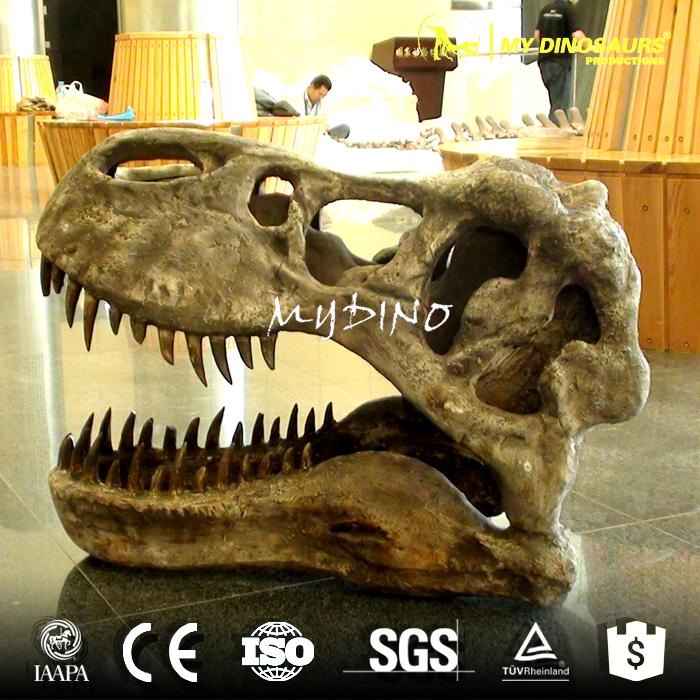 T-Rex Skull.jpg
