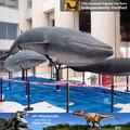lebensgroße modell hai fisch