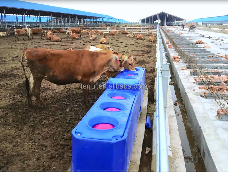 Insulated Cattle Drinking Tank Buy Drinking Tank For