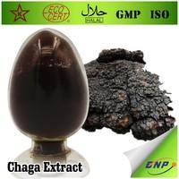 High Quality Chaga Mushroom Extract Powder