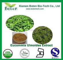 Eucommia Ulmoides Leaf Powder (Chlorogenic Acid)