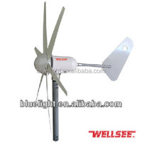 Alternative Energy Generators WELLSEE 300W 400W 12V24V mini wind power generator family windmill power plant
