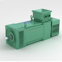 3 phase electrical ac induction motor