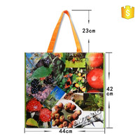 folded recycle shopping bag,foldable Non Woven tote Bag,pp woven polypropylene tote bag