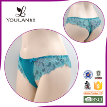 Top Quality Moder Stylish Nylon/Cotton Embroidered Lace Ladies Sexy Transparent Underwear