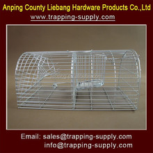 Humane Animal Trap Cage Rat and Mouse Trap in Pest Control