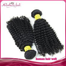 No blends 100% brazilian human hair weave, 100% virgin human Brazilian hair