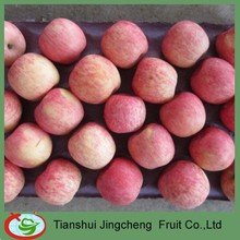 Chinese Fruits Fuji Apple