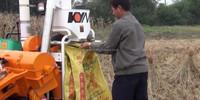 Chinese Multifunctional Combine Harvester Machinery Thresher