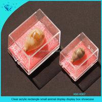 Clear acrylic rectangle small mini display box showcase