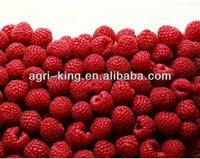 Frozen brands raspberry