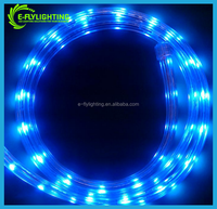 12v dc led strip 5050 led strip 60 Pixels Ws2812b Led Strip