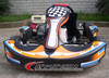 CE/EEC Approved 200CC Go Karts for Adult