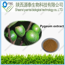 100% Natural High quality Pygeum Bark Extract/ Pygeum Africanum Extract