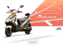FengMi Speedy electric sports bike 1000w48v low price