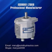With best oil pump prices mini gear pump small hydraulic pump