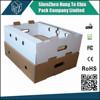 Very strong double wall fruit carton boxes