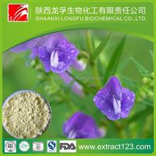 Manufacturer Supply Radix Scutellariae Extract