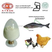 Best Fish Scale Collagen Powder / Chicken Cartilage Collagen Powder / Chicken Collagen Powder Type 2