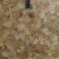 Hotsale petrified wood home decor slab Designs