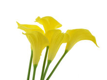 47cm Decorative Wedding Home Real Touch Yellow PU Calla Lily Artificial Flower