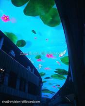 2015 www .xxx com p5 rgb led video wall for ceilings
