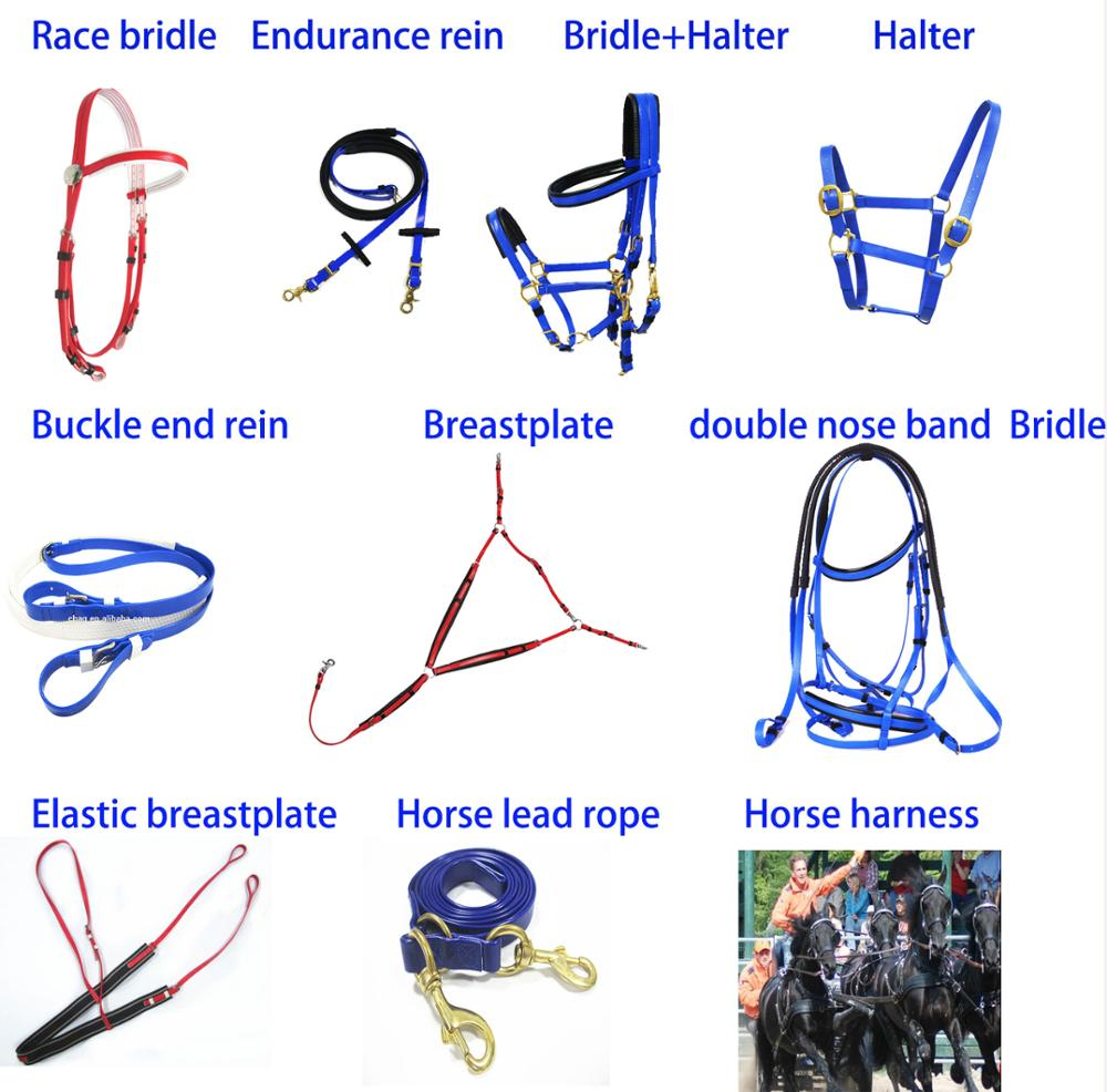 Related products horse