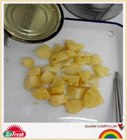 fresh pineapple exporters with factory price