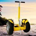 Nouvelle marque hors route vent - Rover prix pas cher scooter électrique chine chariot à vendre