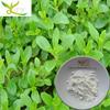 Factory supply stevia sweetener stevioside powder