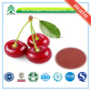 GMP Factory Supply Organic Cherry Extract