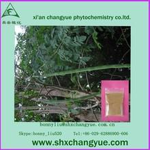 high quality moringa leaf powder buyers