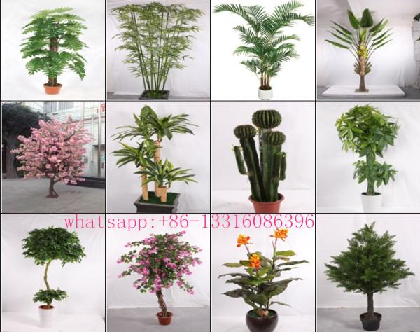 Q082233 Types Of Ornamental Plants Artificial