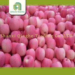 best quality and reasonable price fuji apple hot sale export fruit fresh apple fuji