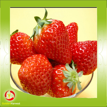 Best 100% Natural Strawberry Juice Concentrate Price