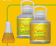 Healthcare supplement algal oil dha soft gel