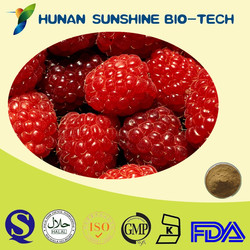 Nature Raspberry Extract for Weight Loss