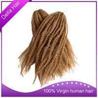 Grade 6A brazilian virgin hair russian human hair wigs african full braided wig