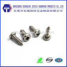 Dongguan direct supplier stainless steel anti-theft screw