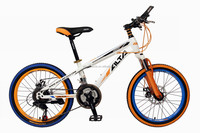 HS-200 21S MTB BICYCLE