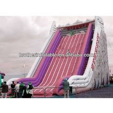 2013 inflatable fire truck slide
