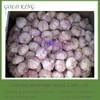 Shandong Fresh Natural Wholesale Garlic Price in Bulk, Garlic price