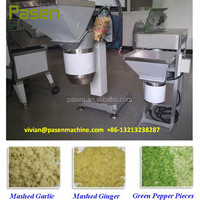 Stainless Steel Ginger Garlic Paste Making Machine with Whatsapp +86-13213238287