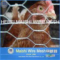 Low Price 3/4'' Galvanized Chicken Wire Netting