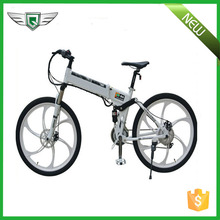 Chinese Folding Electric Bike For Sale, Folding Electric Bike Supplier