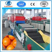 China wholesale fruit and vegetable washing machinecitrus fruit waxing machine