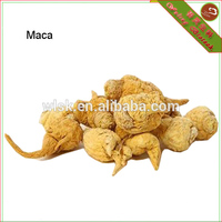 black maca for men sexual health and sex medicines product