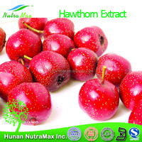 100% Natural Hawthorn Berry Extract /Chinese Hawthorn P.E