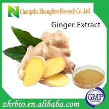 GMP factory supply 100% pure natural Ginger Extract Powder