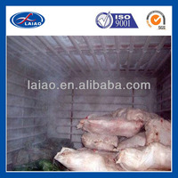 cold storage container to store frozen meat